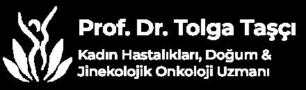 Prof. Dr. Tolga Taşçı